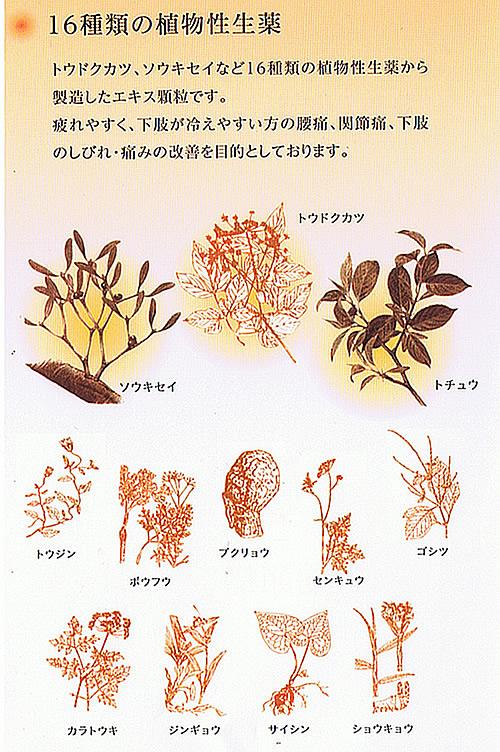 16種類の植物性生薬